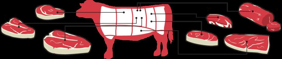 Different Cut of Steak